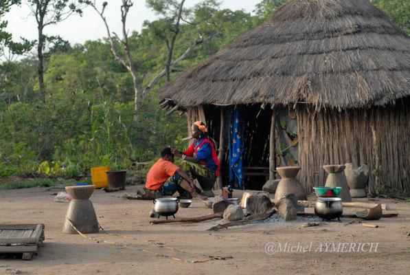 Environs de Komodou. Haute Guinée 2012 @Michel AYMERICH
