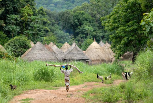 Autre petit village sur la piste menant de Kerouané à Banankoro. Haute Guinée 2012 @Michel AYMERICH