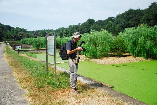 Visite de la ferme aux alligators de Chine dans la province de ANHUI ©Zhang WEI/Michel AYMERICH