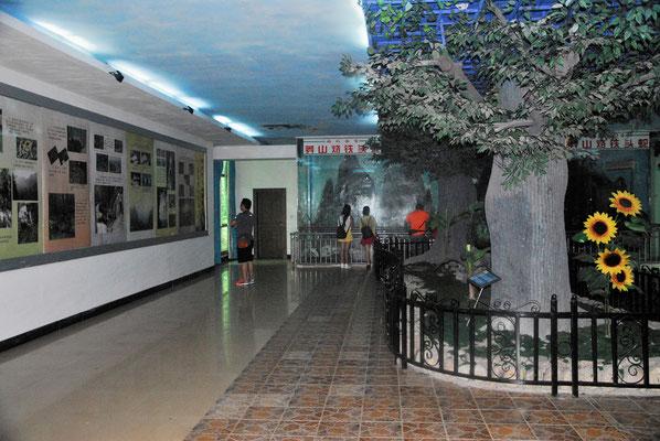 L'intérieur du musée consacré à la fabuleuse vipère de Mangshan... ©Michel AYMERICH