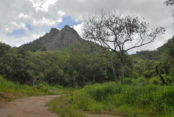 Sur la piste menant de Kerouané à Banankoro. Haute Guinée 2012 @Michel AYMERICH