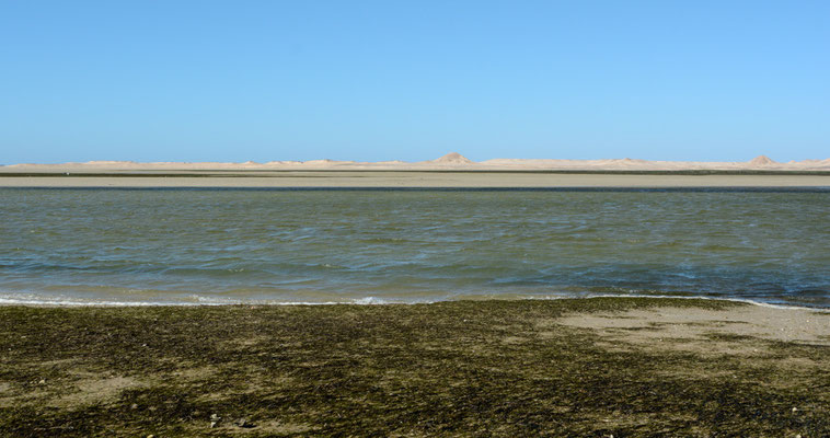 Sur la route de la Mauritanie. De l'autre côté, la péninsule de Dakhla © Michel Aymerich
