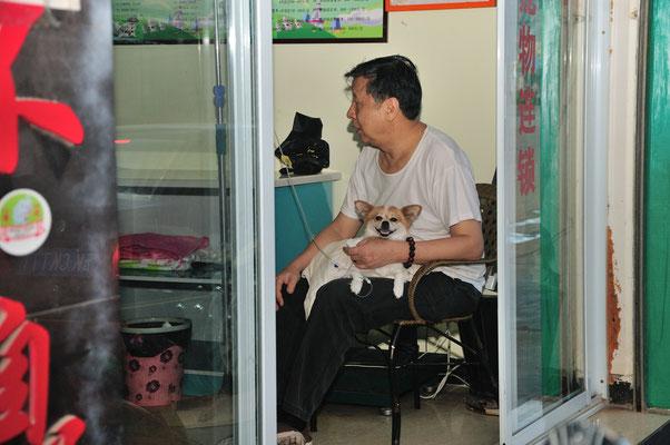 Clinique pour chiens à Menghai au Xishuangbanna (Yunnan), Chine 2017 ©AYMERICH Michel