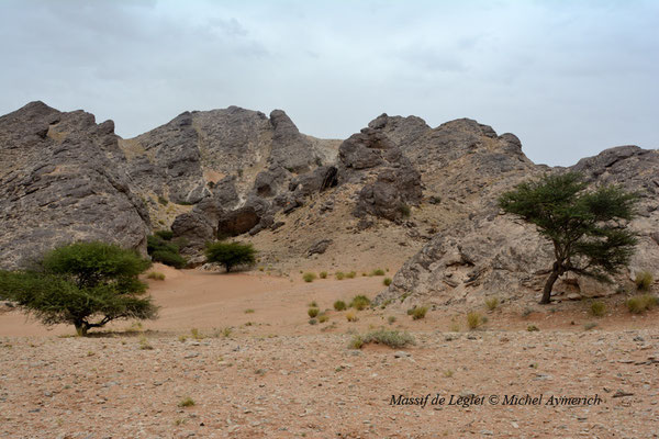 Aspect du massif de Leglet © Michel Aymerich