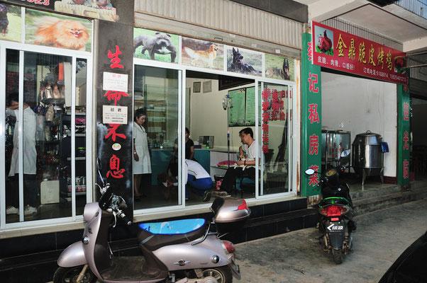 Clinique pour chiens à Menghai au Xishuangbanna (Yunnan), Chine 2017 ©AYMERICH Michel Menghai au Xishuangbanna (Yunnan), Chine 2017 ©AYMERICH Michel