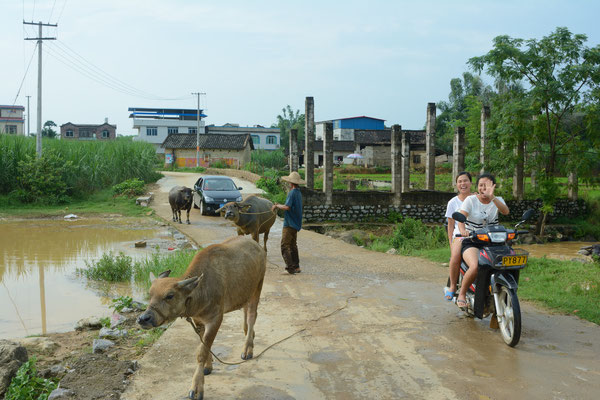 Dans un village à quelques dizaines de km de Liuzhou  (région autonome Zhuang du Guangxi) ©Michel AYMERICH