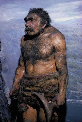 """Reconstitution d'homme de Néandertal  (sans rapport avec """"l'homme congelé"""")"""