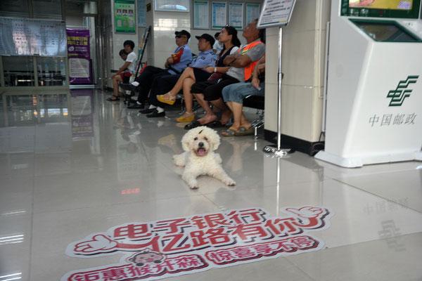 Dans une poste de Chenzhou (HUNAN) ©Michel AYMERICH