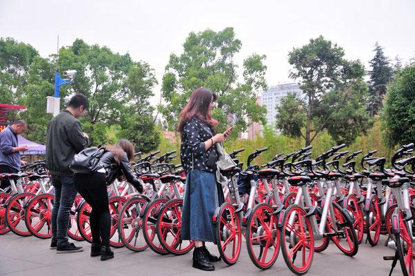 Bicyclettes qu'on peut louer avec une application de son téléphone à Kunming (Yunnan), Chine 2017 ©AYMERICH Michel