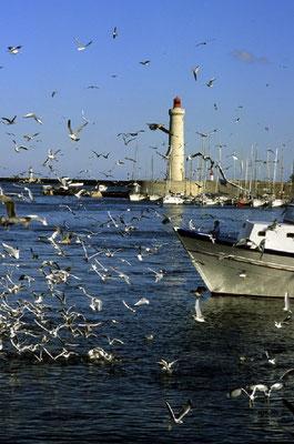 Hafen von Sète © ATOUT FRANCE/Catherine Bibollet