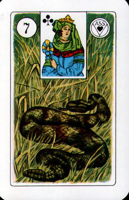 Nr. 7 Schlange - Mutter, Großmutter, Tante, ältere Frau oder Freundin, Arbeitskollegin, Ex-Frau, auch Geliebte