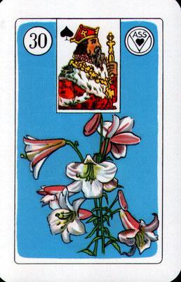 Nr. 30 Lilie - mit positiver Karte: Anregung (Sex), mit negativer Karte: Aufregung (Hektik)