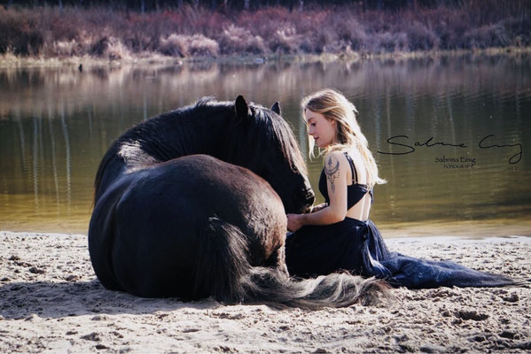 schwarzes Pferd liegend