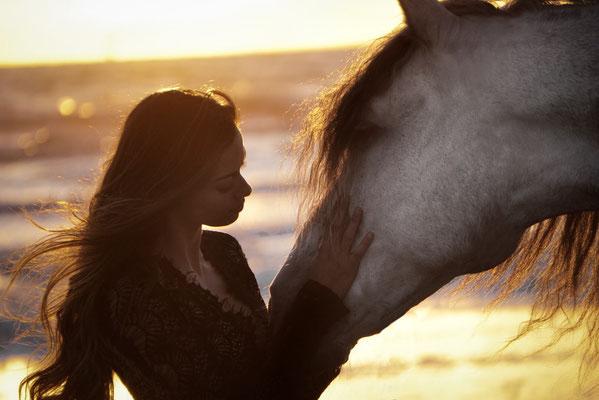 Spanische Pferd am Meer