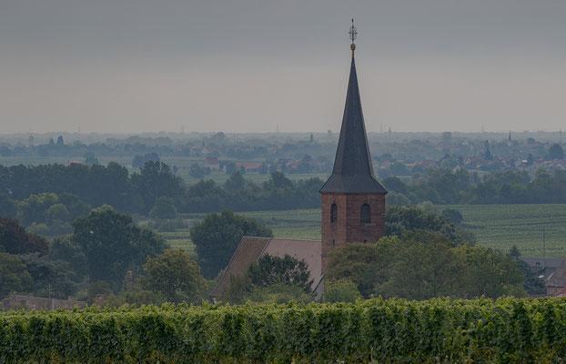 Forst mit Kirchturm in Morgenstimmung