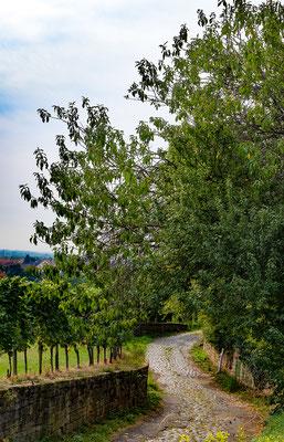 Pflasterweg Forst