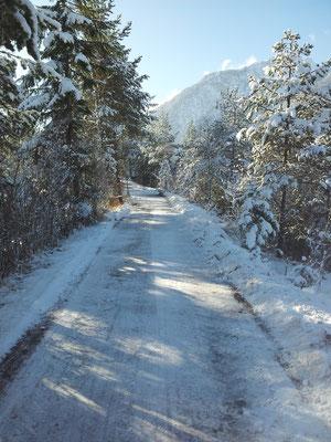 Spazierwege finden sich auch im Winter