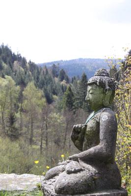 Buddha im Schwarzwald