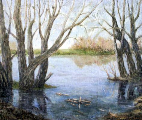 Татьяна Казакова. Весенние воды