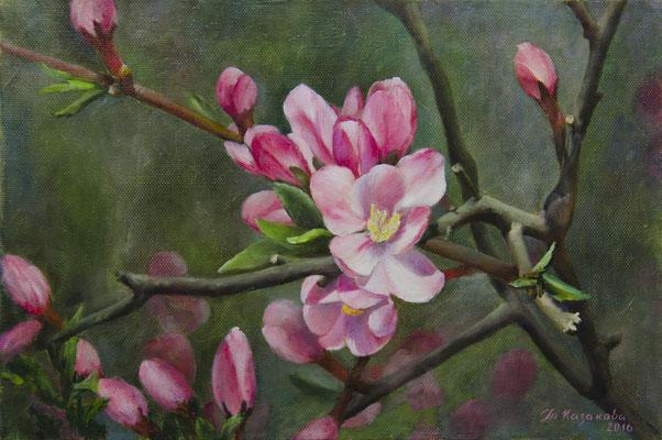 Татьяна Казакова. Цветение