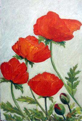 Татьяна Казакова. Маки