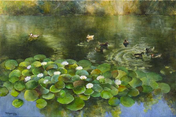 Татьяна Казакова. Озеро в ботаническом саду