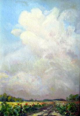 Татьяна Казакова. После грозы. Облако