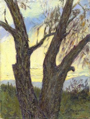 Татьяна Казакова. Два дерева