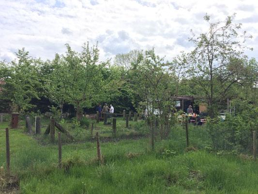 Der Gemeinschafts-Gemüse-Garten in Otterndorf