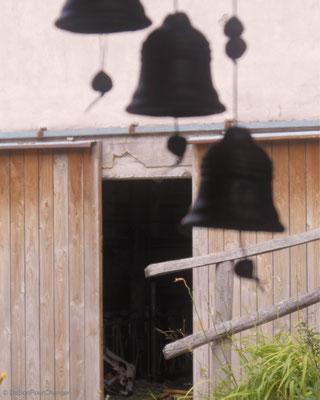 A quelques pas de l'étable, tintements légers de carillons - Ferme Humbert