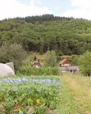 Le jardin de Dédé, à la ferme Humbert