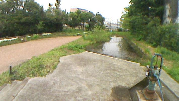 トンボ池周辺の全景です