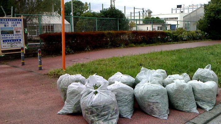 ビニール袋は草でいっぱいに!