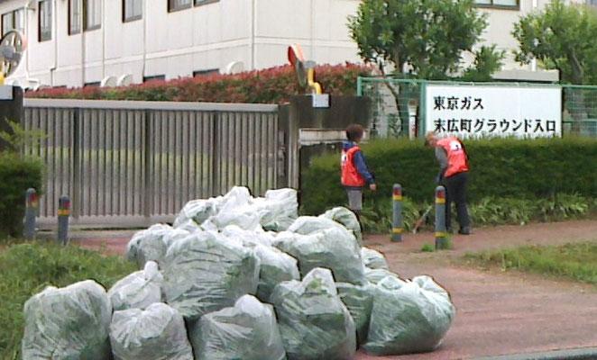 草が詰め込まれた袋の山(7月7日)