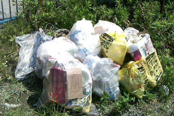 回収したゴミの山です