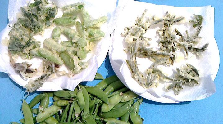 収穫したサヤエンドウと野草の天ぷらを楽しみました