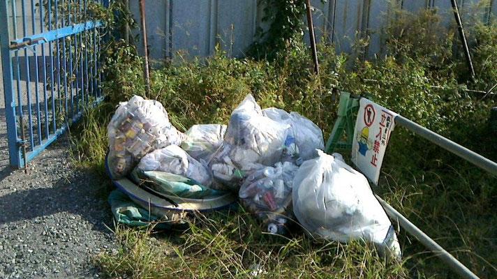 回収したゴミの山