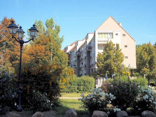 Wohnblocks mit viel Grün in der Innenstadt