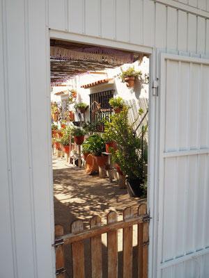 offene Türen bieten Einblick in die Patios