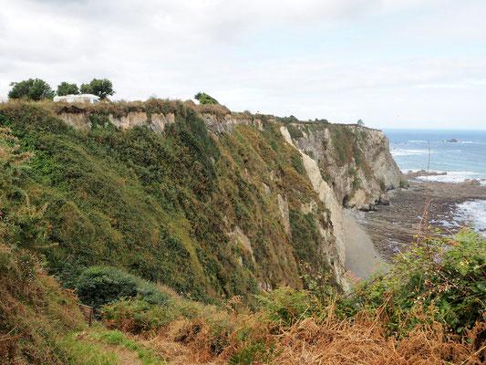 Maggie hoch oben auf der Steilküste