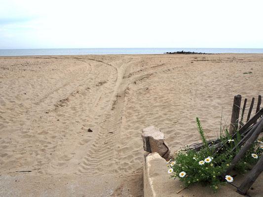 breiter und kilometerlanger Sandstrand