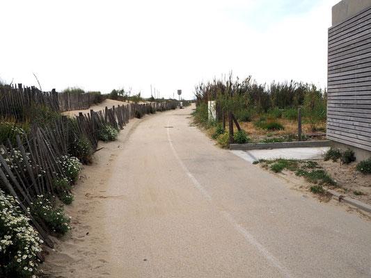 ein bequemer Fahrradweg am Strand über viele Kilometer entlang
