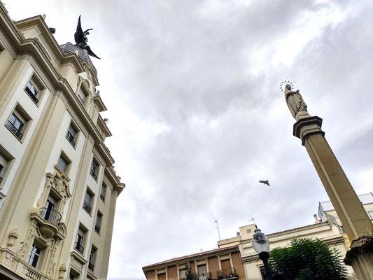 Vogelflug zwischen Heiligen an der Plaza de las Flores
