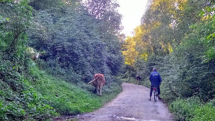 nachdem wir kilometerweit niemandem begegnet waren, wollten wir an dieser Stelle nicht stören und traten den Rückweg an