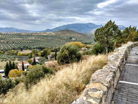 ... mit schöner Aussicht auf die Olivenhaine