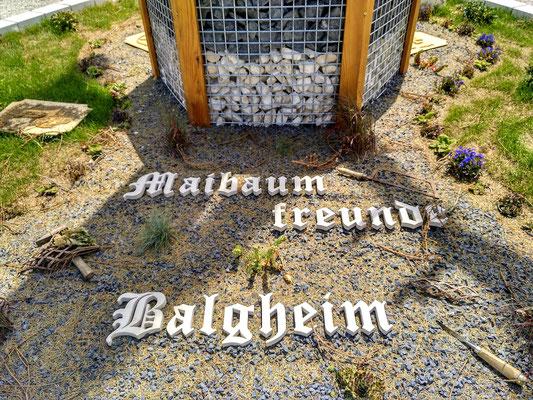 """der Stolz von Balgheim:  """"Schönster Maibaum Bayerns 2019"""""""