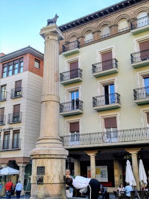 da lacht der Spanier: Mini-Toro in der Plaza del Torico (Stierchen)