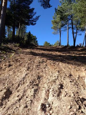 ... aber dann ging es steil abwärts im Sand mit Steinen