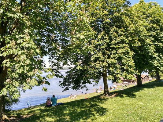 nur einer von vielen wunderschönen Plätzen rund um den Ammersee