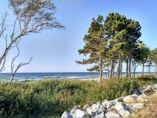 hier ist die Ostsee noch so, wie ich sie von vor 60 Jahren in Schleswig-Holstein erinnere ...